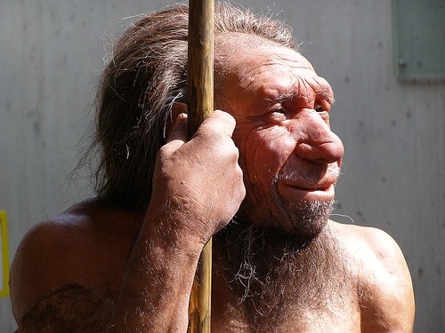 Neue Studie: Stuhlanalyse beim Neanderthaler zeigt – fleischlastig mit etwas Gemüse