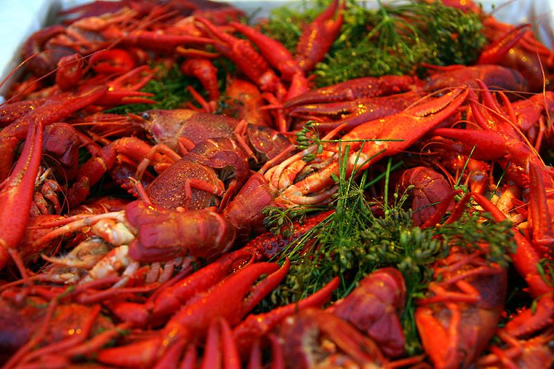 800px-Cooked_crayfish_with_dill
