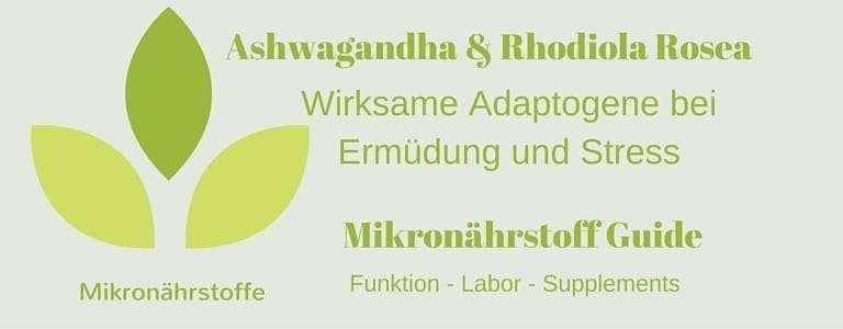 Mikronährstoff Guide – Ashwagandha und Rhodiola Rosea. Wirksame Adaptogene bei Ermüdung und Stress