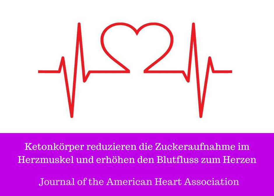 Studie - Ketonkörper reduzieren die Zuckeraufnahme im Herzmuskel und ...
