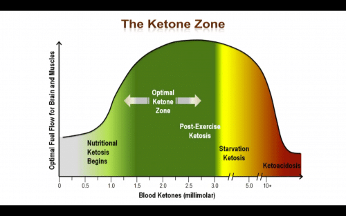 Nutritional Ketosis