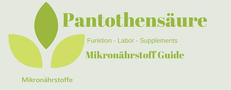 Mikronährstoff-Guide – Pantothensäure