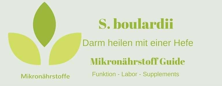 Mikronährstoff-Guide: Saccharomyces boulardii – die Hefe, die den Darm heilt