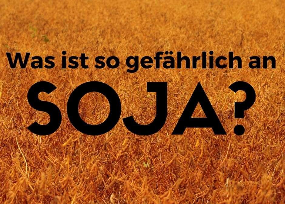 Was ist so gefährlich an Soja?