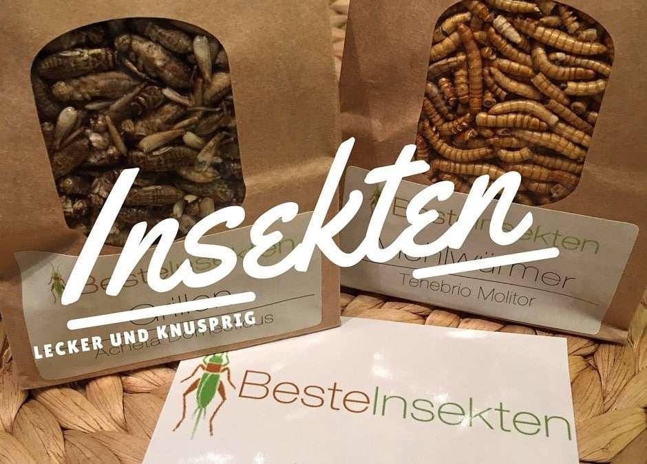 Mehlwürmer und Grillen von Beste Insekten – Produkttest