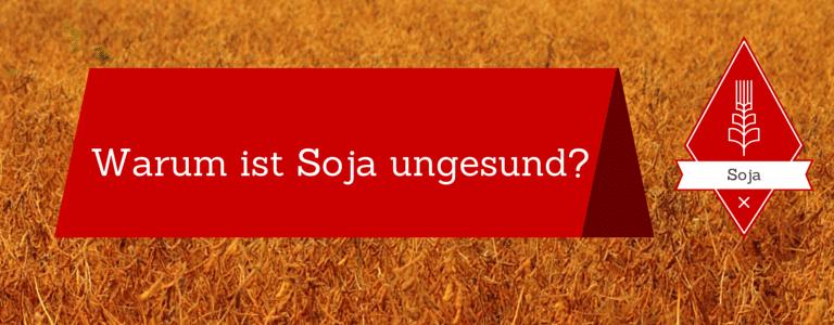 Warum ist Soja ungesund?