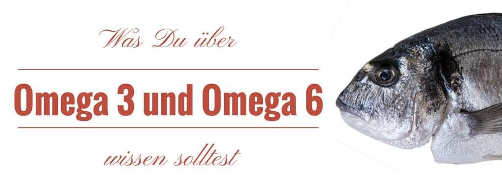 Warum zu viel Omega-6 und zu wenig Omega-3 dich krank machen