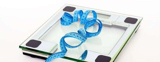 Nie mehr Kalorienzählen – mein Gastartikel auf Paleo360