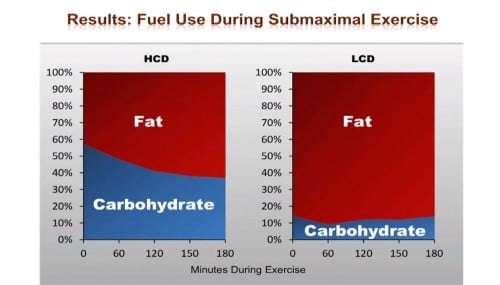 Energiebereitstellung bei submaximalem Training (65% VO2max) über 180 Minuten