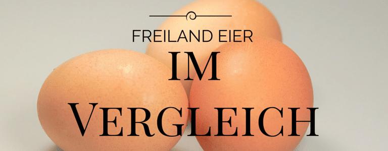 Eier vom Bauernhof oder aus dem Supermarkt?  Ein Vergleich der essentiellen Fettsäuren Omega-3 und Omega-6 in Eiern aus Freilandhaltung