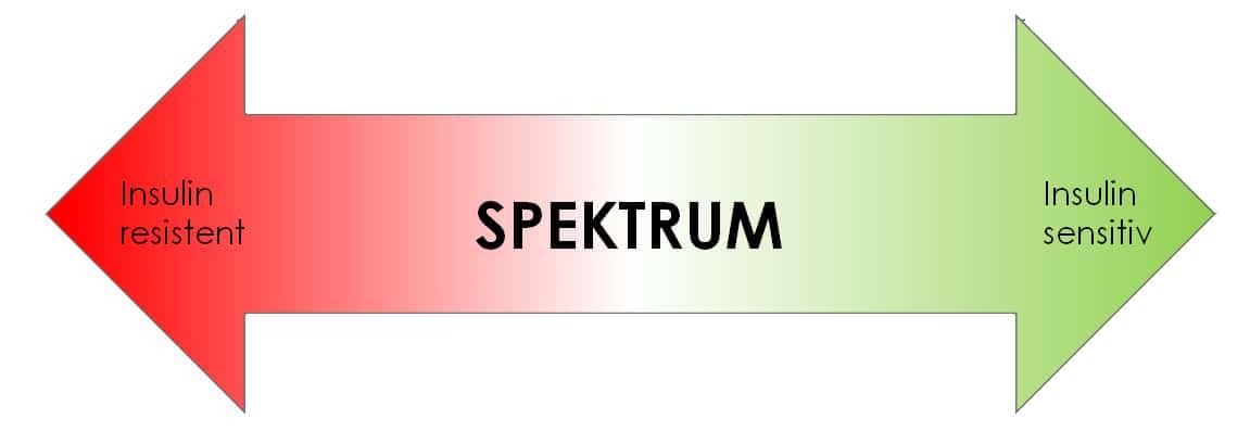 insulinresistenz_spektrum